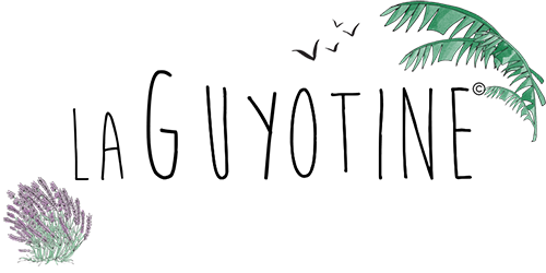 cropped-logo-signature-banniere-500x250.png